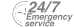 24/7 Emergency Service Pest Control in Watford, Cassiobury, WD17. Call Now! 020 8166 9746